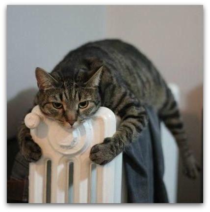 valvole termostatiche nei condomini